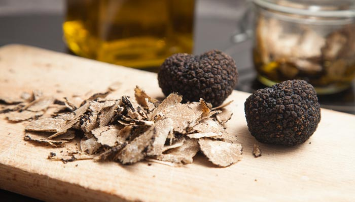 Truffle hunting with lunch